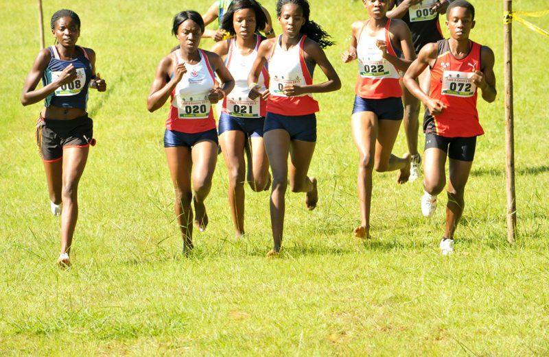 University Cross Country Championship