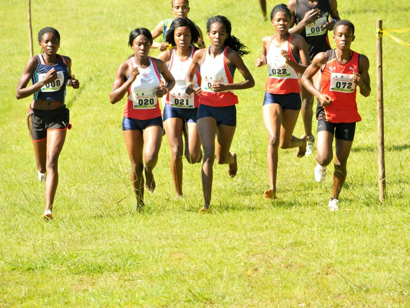 University Cross Country Championship