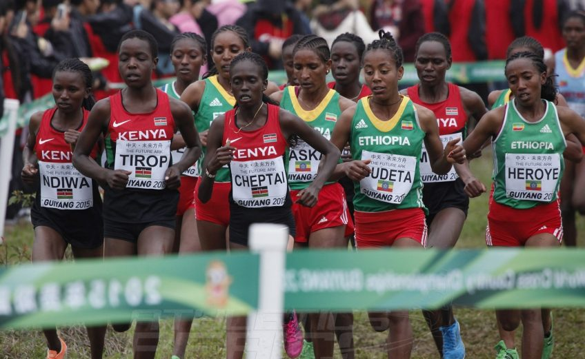 Senior women race at the IAAF World Cross Country Championships, Guiyang 2015 / Photo credit: © Getty Images for IAAF